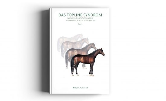 Book Cover of Topline Syndrom
